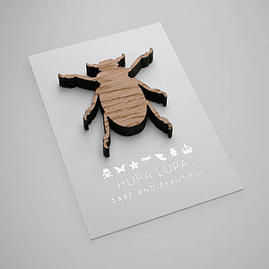 Oak Beetle Magnetic Decoration - decorative accessories