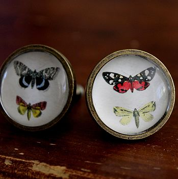 Set Of Two Butterfly Drawer Knobs