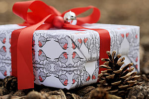 Robin Wrapping Paper - cards & wrap
