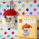 Father Christmas Decoration Mini Kit