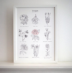 'Floriography Say It With Flowers' Print - limited edition art