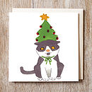 Cat in a Christmas tree hat