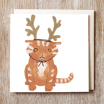 Cat in reindeer hat