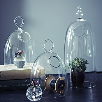 Bobo Mini Glass Cloche