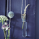 Hanging Bloom Tube, Set Of Two