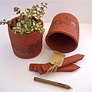 Terracotta Pot And Four Plant Markers