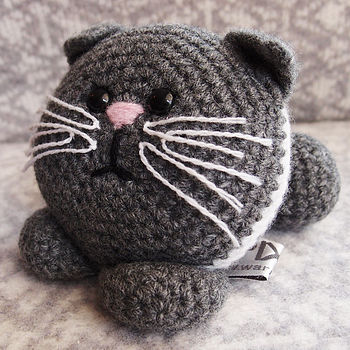 Completed Kitten