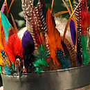 feather headdress rainbow (detail)