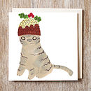 Cat in figgy pudding hat
