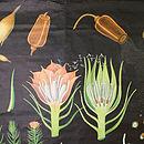 Vintage Botanical Chart Haarmos
