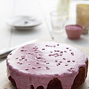 Raspberry & Vanilla Cake Mix