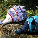 Blue and Cream hedgehog