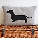 Thumb_dachshund-dog-cushion