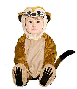 World Book Day Child's Meerkat Costume - toys & games