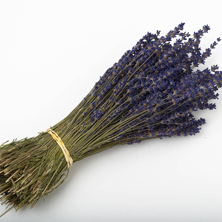 Dried Lavender Bunch By Shropshire Petals Notonthehighstreet Com