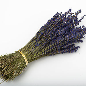 Dried Lavender Bunch - flowers & plants