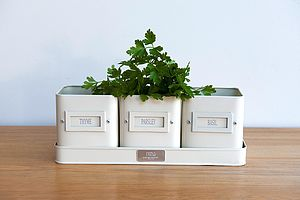 Kitchen Herb Pots - tins, jars & bottles
