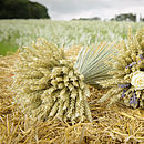 Medium wheat sheaf