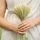 small wheat sheaf