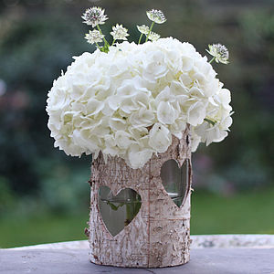 Wooden Birch Bark Vase Or Lantern
