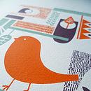 bubble & tweet forest bird close up