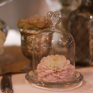 Mini Glass Dome Bell Jar - interior accessories