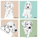Personalised Illustration Gift Voucher