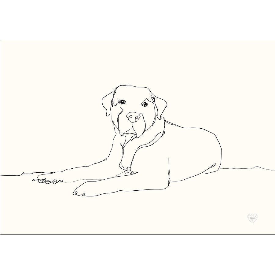 Contour Line Drawing Dog : Personalised pet portrait by mimi mae
