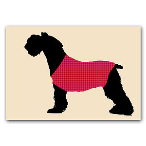 German Schnauzer Dog With Red Sweater On