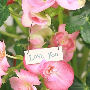Little Words Sign Love You - shop by price
