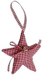 Red Gingham Christmas Star