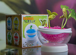 Grow A Message Beanstalk Pod Set - table decorations