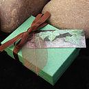 Ivy gift box