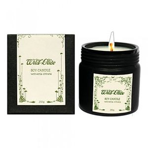 Vetiveria Citrata Soy Candle And Massage Oil - bathroom