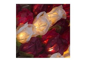 Chelsea Rose Lights - fairy lights & string lights