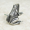 Wild Frog Ring Antiqued Pewter