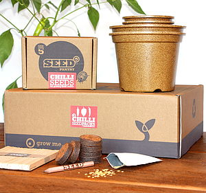 Chilli Seeds Starter Pack - flowers, plants & trees