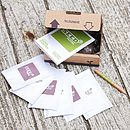 Mini Herb Garden Seed Kit