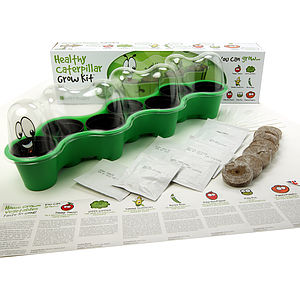 Healthy Caterpillar Grow Kit Educational Gift