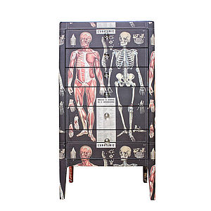 Anatomy Skeleton Chest Of Drawers - chests of drawers