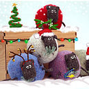 Sheep Christmas Card Pack