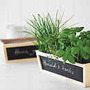 Set Of Two Chalkboard Planters