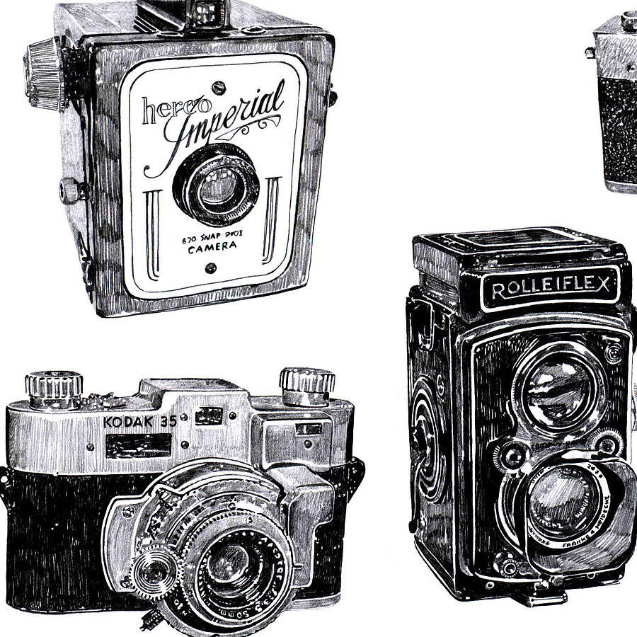 Vintage Camera Print By Ros Shiers