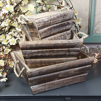 Set Of Three Wooden Planting Trays