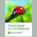 Ladybird Lodge And Flower Seeds
