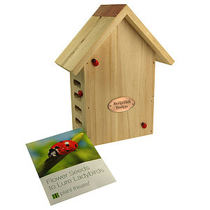 Ladybird Lodge And Flower Seeds - birds & wildlife