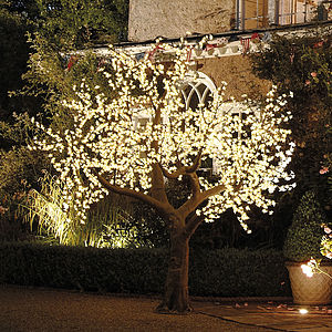 Illuminated Decorative LED Tree - outdoor lighting & candles