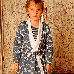 Dinosaur Blue Dressing Gown - nightwear