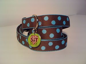 Bluebell Spotty Dog Collar And Lead - dogs