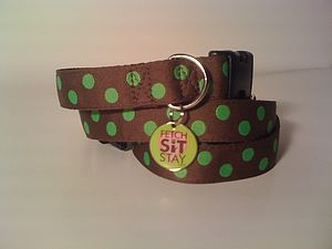 Apple Spotty Dog Collar + Lead - dog collars